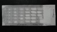 paint sample CAPS6