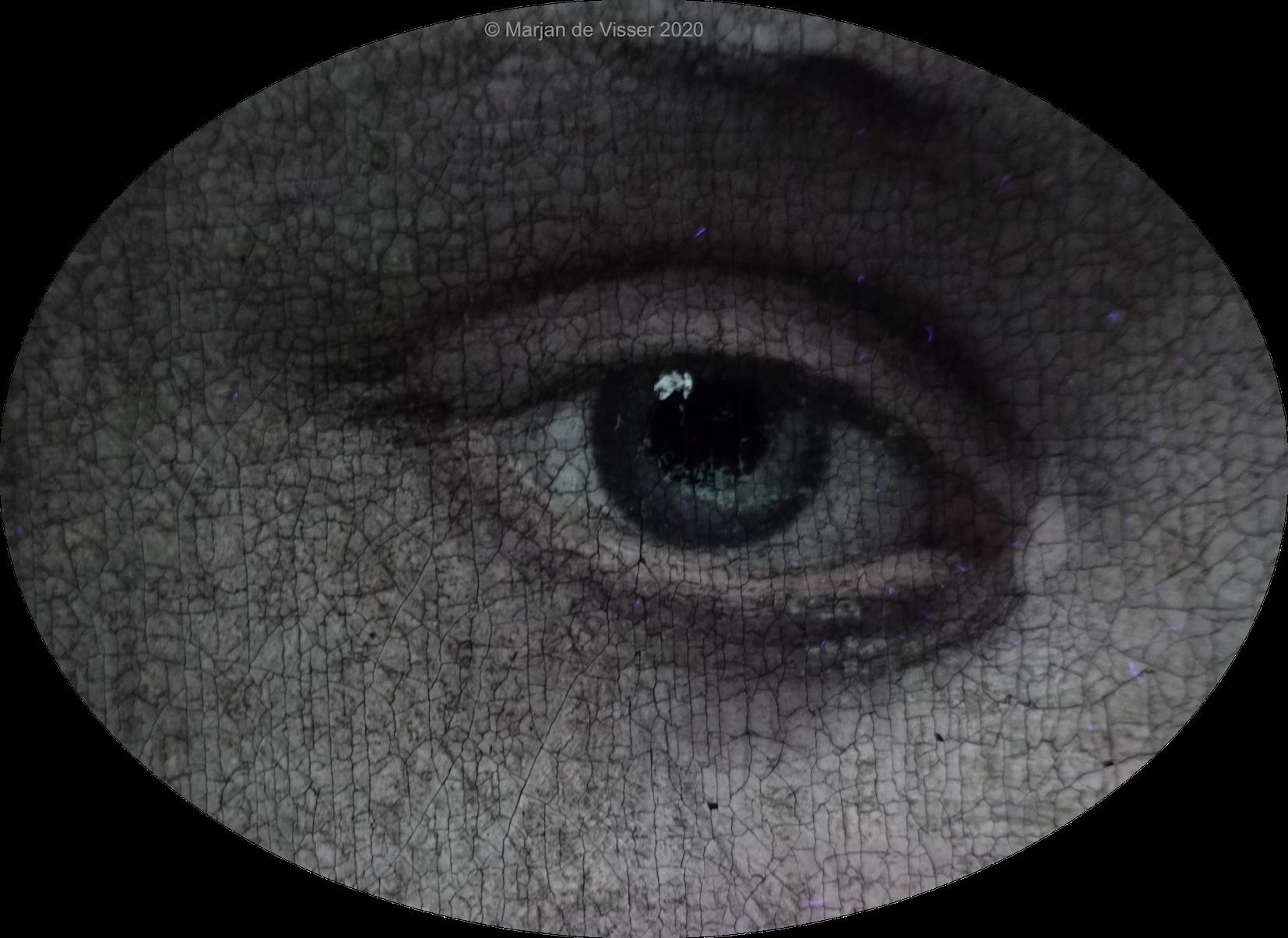 het oog van flora